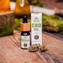 Olej konopny Natural 5% (500 mg) Full Spectrum – 10 ml × 1
